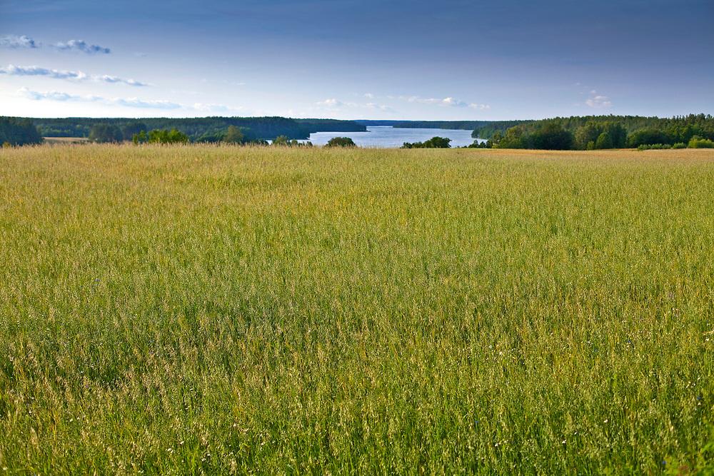 Kaszuby, 20011-07-05. Kaszubski krajobraz - okolice Wdzydz Kiszewskich