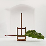 still life with vegetable on a easel