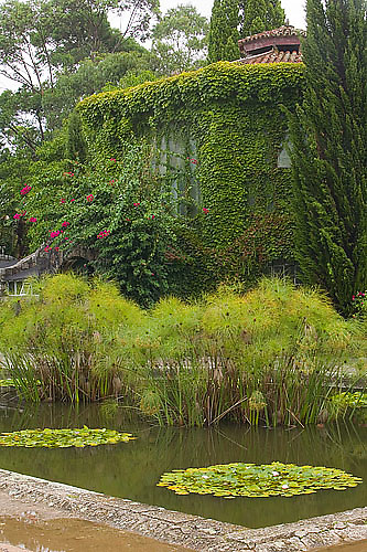 South America, Uruguay, Rocha, Parque Nacional Santa Teresa, invernaculo, conservatory, lily pond and papyrus