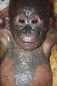 mummified orangutan nursed back to health