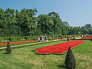 Ogród w Wilanowie, Warszawa, Polska<br /> Garden in Wilanów, Warsaw, Poland