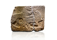 Hittite monumental relief sculpted orthostat stone panel of a Procession. Basalt, Karkamıs, (Kargamıs), Carchemish (Karkemish), 900-700 B.C. Anatolian Civilisations Museum, Ankara, Turkey. Two animals struggling with each other. The lion attacking the bull holds the bull's chin and turns it backwards.  <br /> <br /> Against a white background. .<br />  <br /> If you prefer to buy from our ALAMY STOCK LIBRARY page at https://www.alamy.com/portfolio/paul-williams-funkystock/hittite-art-antiquities.html  - Type  Karkamıs in LOWER SEARCH WITHIN GALLERY box. Refine search by adding background colour, place, museum etc.<br /> <br /> Visit our HITTITE PHOTO COLLECTIONS for more photos to download or buy as wall art prints https://funkystock.photoshelter.com/gallery-collection/The-Hittites-Art-Artefacts-Antiquities-Historic-Sites-Pictures-Images-of/C0000NUBSMhSc3Oo