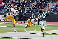 12 November 2011:  Joey Driver pulls down a pass in the end zone during an NCAA division 3 football game between the Augustana Vikings and the Illinois Wesleyan Titans in Tucci Stadium on Wilder Field, Bloomington IL