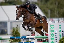 Meskens Matthias, BEL, Qarrasco vd Plataan<br /> BK Young Horses 2020<br /> © Hippo Foto - Sharon Vandeput<br /> 6/09/20