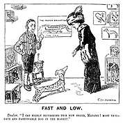 """Fast and Low. Dealer. """"I can highly recommend this new breed, Madame! Most up-to-date and fashionable dog in the market."""""""
