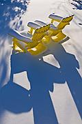 Muskoka chairs in winter<br />Winnipeg<br />Manitoba<br />Canada