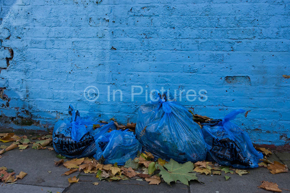 Blue refuse bags have been left at the foot of a matching blue brick wall. In this side street of a south London suburb, we see the garbage lying on the pavement (sidewalk) surrounded by autumnal maple leaves. The wall in the background has been roughly painted, the bricks starting to crack. But the picture is about the similar colours of the wall to the Southwark borough council bags that are provided free for residents wishing to dispose of green garden waste only. If you live in a house or flat at street level you will have a blue box and bag for your recycling. In most cases, if you have a green rubbish bin you will also be able to use a blue box and bag.
