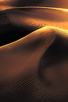 When the light comes through the dunes!