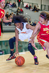 31 December 2015:  2016 State Farm Holiday Classic Large School Girls Championship game between the Rock Island Lady Rocks and the Chicago North Lawndale College Prep Lady Phoenix  at Shirk Center in Bloomington Illinois
