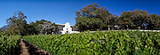 Groot Constantia wine estate. Stitched panoramic image. Greg Beadle shoots panoramic images