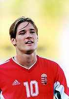 Fotball<br /> Benfica Hungarian international striker Miklos Feher (Ungarn) collapsed and died after suffering a heart attack during the Portuguese league game against Vitoria<br /> <br /> Foto: Digitalsport/AFCD/Chamaco<br /> <br /> THIS PICTURES IS NORWAY ONLY!