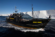 Sea Shepherd ship, the M/Y Steve Irwin, bears a large scar along its starboard hull following a collision with Japanese harpoon whaling ship, the Yushin Maru No. 3.  Sea Shepherd cruised Antarctica's Southern Ocean near the Ross Ice Shelf following the dramatic confrontation at sea. (Photo by Adam Lau)