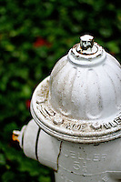 Fire hydrant in a park - vertical