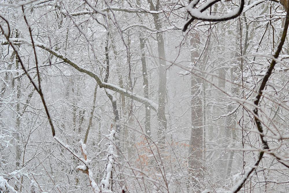 Ohio March Snow