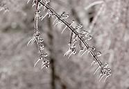December 08 ice storm