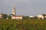 Vineyard. The church in Pomerol. Pomerol, Bordeaux, France