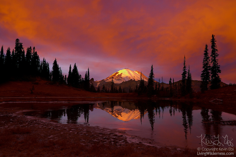 Mt. Rainier reflects in the still waters of Tipsoo Lake during a vibrant fall sunrise.