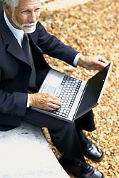 Dec. 05, 2012 - Businessman with computer (Credit Image: © Image Source/ZUMAPRESS.com)