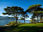 The beautiful and tranquil Lough Lein, Killarney, Ireland where the Children of Lir once lived.<br /> Picture by Don MacMonagle -macmonagle.com