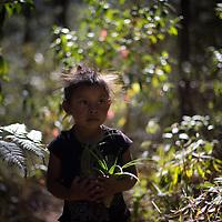 Honduras: COPINH