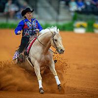 Reining - Tryon 2018 World Equestrian Games