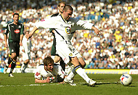 Photo: Aidan Ellis.<br /> Leeds United v Plymouth Argyle. Coca Cola Championship. 07/04/2007.<br /> Leeds David Healy scores the equaliser
