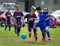 15 March 2015. New Orleans, Louisiana.<br /> U9 New Orleans Jesters Elites, Purple team, Game 1 against  Gonzales Soccer Club. Jesters win 5-0.<br /> Photo; Charlie Varley/varleypix.com