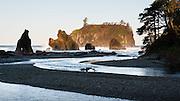 Cedar Creek, Abbey Island, sea stacks, surf, driftwood, coastal forest at Ruby Beach, Olympic National Park, Washington, USA