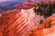 Evening light on Cedar Breaks, Cedar Breaks National Monument, Utah USA