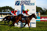 Earthly ridden by Joey Haynes and trained by B J Llewellyn wins The Signs Express Handicap (Class 6) (4YO plus) - Mandatory by-line: Robbie Stephenson/JMP - 25/06/2020 - HORSE RACING - Bath Racecoure - Bath, England - Bath Races 25/06/20