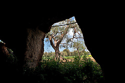 Pozzo Faceto è una frazione di Fasano (BR), dal quale dista 9km..Prende il nome dall'omonimo santuario, dedicato alla Beata Vergine del pozzo, così chiamata perché il ritrovamento della sacra immagine avvenne proprio durante i lavori nel pozzo attualmente esistente all'ingresso del santuario: alcuni operai, durante lo scavo, si imbatterono in una specie di grotta, che aveva per sfondo un'immagine della Madonna (probabilmente un'antica cripta rupestre). Staccato il masso, lo portarono in superficie, adagiandolo sull'altare centrale del santuario..