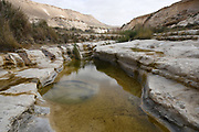 Wadi Hawarim, Negev Desert, Israel. Flood water collects in the stone pools