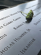 The 9/11 Memorial in New York City with a flower on a section of the names of people who were killed