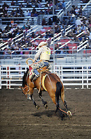 Ben Londo from Pendleton, Oregon stays on Pine Ridge during the first round of the saddle bronc competition on Thursday, opening night for the 2013 California Rodeo Salinas.