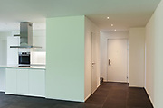 interior of new apartment, view  entrance and domestic kitchen