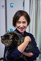 Japon, île de Honshu, région de Kansaï, Kyoto, café à chats // Japan, Honshu island, Kansai region, Kyoto, cat café