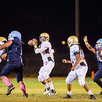 101113       Brian Leddy<br /> Chinle Wildcat Wanya Gray (7) looks for an open player during Friday's game in Window Rock.
