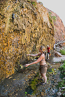 Hikers check out the dripping hot water and moss at The Nevada Hot Springs in The Black Canyon, Nevada.