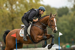 Lison Dirk, BEL, Boy Tommy VD Hertenrode Z<br /> CNC Minderhout 2020<br /> © Hippo Foto - Dirk Caremans<br /> 25/10/2020