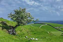 Irish hillsides near Cornamona, County Galway, Ireland