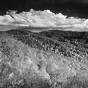 Cherohala Skyway - Fall Color - Great Smoky Mountains - Infrared Black & White