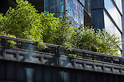 The High Line by Hudson Yards from West 30th Street on west side Manhattan, New York City