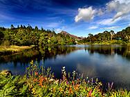 Photographer: Chris Hill, Ballynahinch Castle, Connemara, County Galway,
