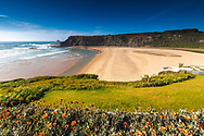 Perfect sand beach in Vicentina Natural Park