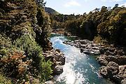 Pelorus River, Marlborough, South Island, New Zealand