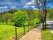 Nowy Wiśnicz 11-05-2019. Aleja prowadząca na Zamek w Wiśniczu – położony na wzgórzu nad rzeką Leksandrówką  wzniesiony przez Jana Kmitę w 2. połowie XIV wieku.