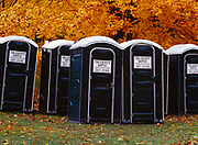 Yupper Heaven!  Field of outhouses with maple forest beyond, Tri-County Sceptic, Shingleton, Michigan.