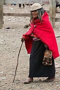 Indian woman in market<br /> Maria Antonia Morocha<br /> Calpi animal market<br /> Parish of Riobamba, Chimborazo Province<br /> Andes<br /> ECUADOR, South America