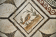 Picture of a Roman mosaics design depicting  a bird charmed by  music being played by Orpheus, from the ancient Roman city of Thysdrus, Bir Zid area. 2nd century AD. El Djem Archaeological Museum, El Djem, Tunisia. .<br /> <br /> If you prefer to buy from our ALAMY PHOTO LIBRARY Collection visit : https://www.alamy.com/portfolio/paul-williams-funkystock/roman-mosaic.html . Type - El Djem - into the LOWER SEARCH WITHIN GALLERY box. Refine search by adding background colour, place, museum etc<br /> <br /> Visit our ROMAN MOSAIC PHOTO COLLECTIONS for more photos to download as wall art prints https://funkystock.photoshelter.com/gallery-collection/Roman-Mosaics-Art-Pictures-Images/C0000LcfNel7FpLI