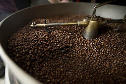 Freshly roasted coffee beans sit in the cooling tray of the roaster, at Devout Coffee, Tuesday, April 5, 2016, in Fremont, Calif. Ideally, the beans will cure for several days before actually being ground and brewed for drinking. (Photo by D. Ross Cameron)